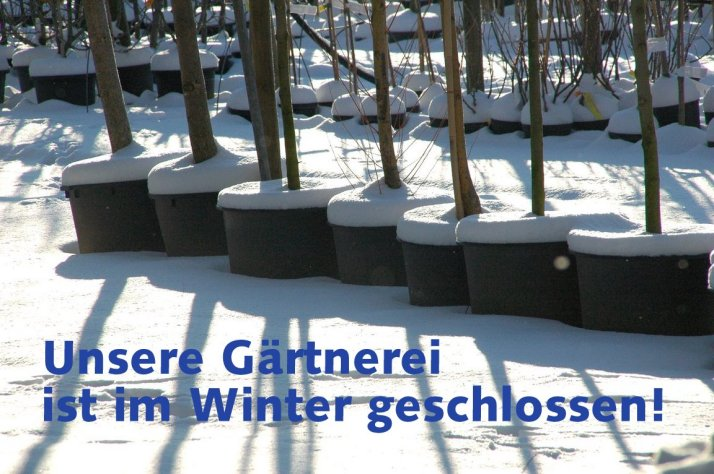 winter gaertnerei