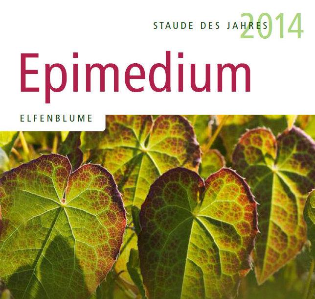 sdj 2014 epimedium
